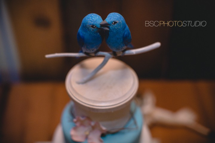 Awesome bird wedding cake topper